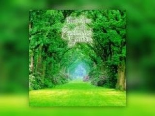 【專輯】Kevin Kern-In the Enchanted Garden